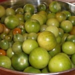Colander of green cherry tomatoes