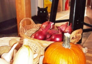 Vegetables in the kitchen with cat