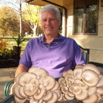 Leo Sulentic with his gray oyster mushrooms
