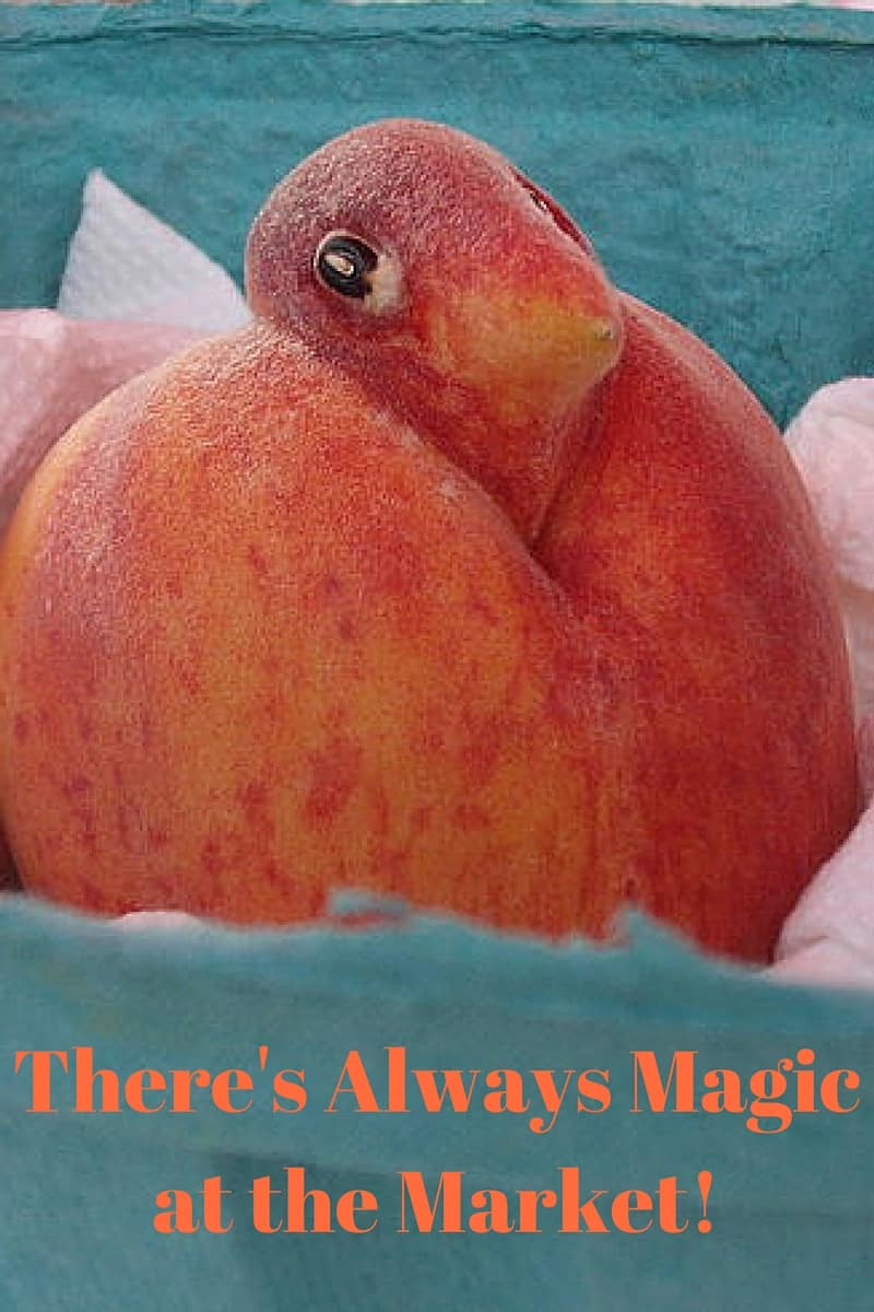 peach shaped like bird