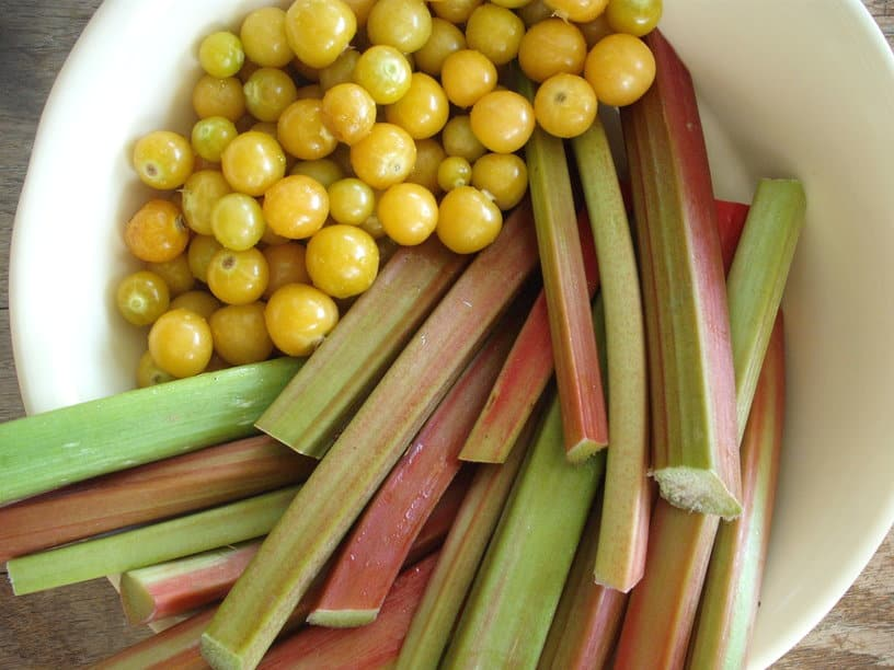 ground cherries and rhubarb in a bowl