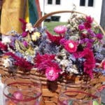 Lisa's Dried flowers