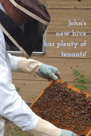 John in suit with new hive tenants