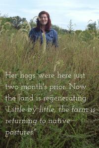Baine in pasture that has regenerated
