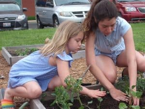 Market Sprouts: child planting in the garden at market