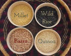 samples of ancient grains: millet, wild rice, farro and quinoa