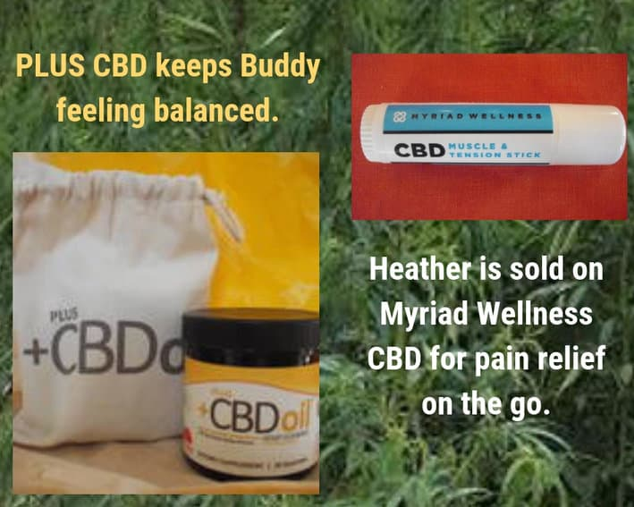 Blogger Box Products: Plus CBD Oil Gummies and Myriad Wellness CBD stick