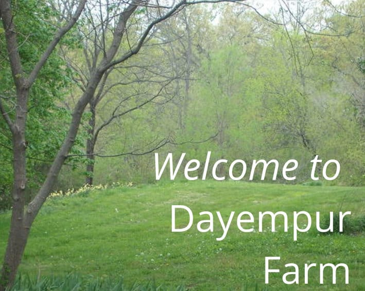 Dayempur Farm: The Business of Food, Fellowship and Faith