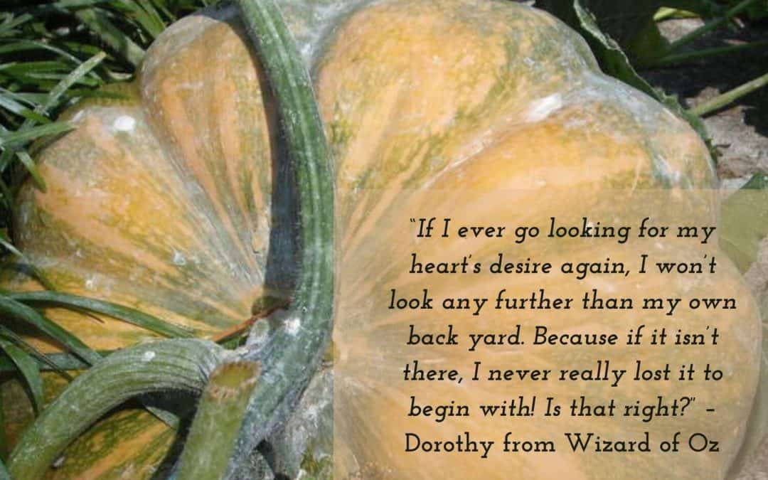 Pumpkin with quote from The Wizard of Oz