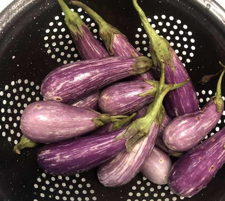 Vegan Liver and Onions (aka: Eggplant and Shallots)