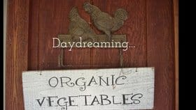 Taking the Road Less Traveled: A Visit to Daydream Farm and Marcoot Jersey Creamery