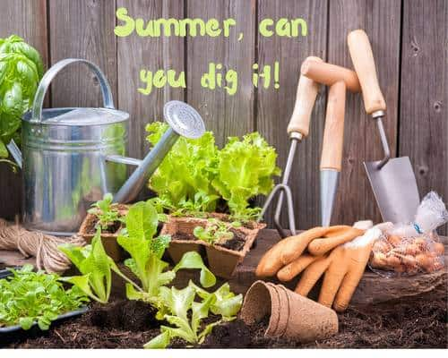 Digging into Summer: the Joy, the Fresh Air…the Sweat, Sore Muscles and Dry Skin—Let's Fix that!